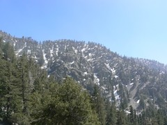 Mount-Baldy1.JPG