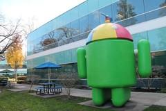 google5.JPG