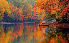 Portland-Fall.jpg