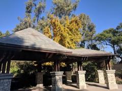 arboretum-fall-01.jpg
